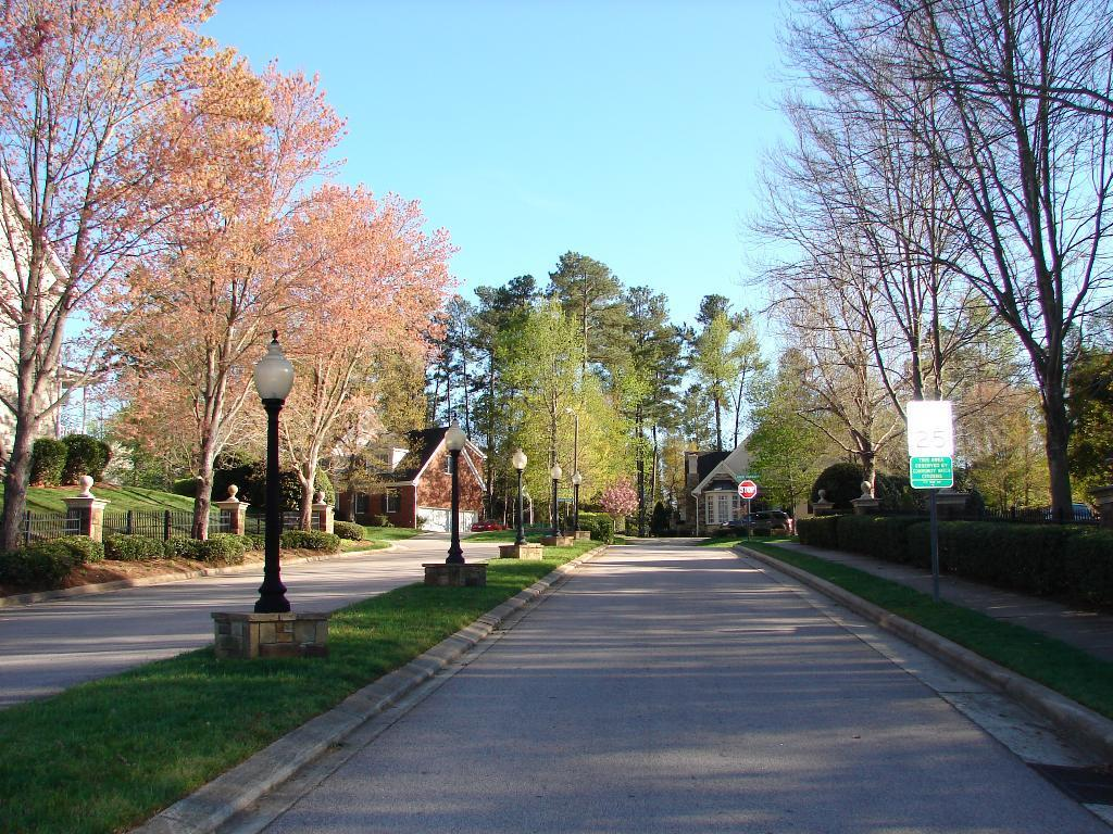 camden-forest-neighborhood.JPG